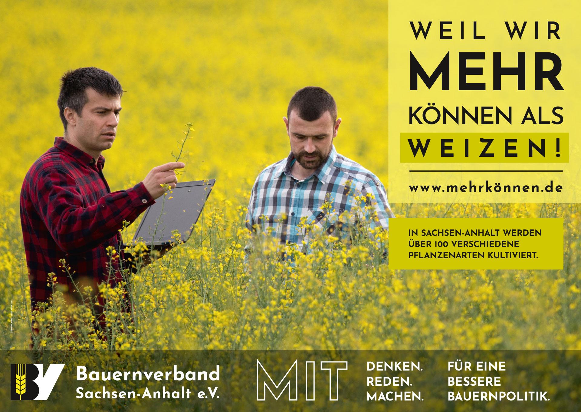 Plakatmotiv: Weil wir mehr können als Weizen!